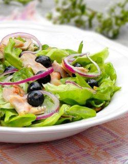 Salade-de-poulet-et-myrtilles